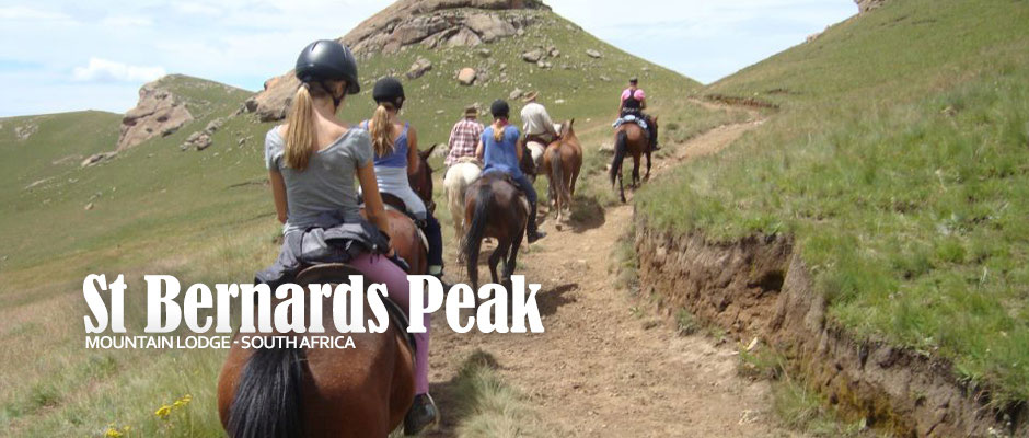 St. Bernard's Peak Mountain Lodge