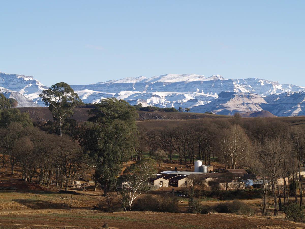 Scotston Manor